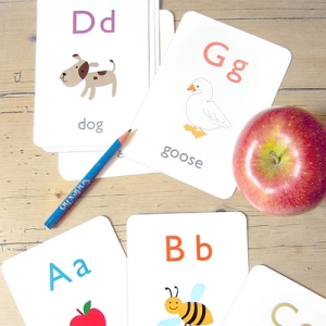 Flash Card Manufacturers in Firozabad